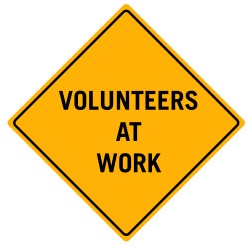 Assessing the Value of Volunteers